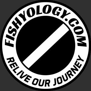 Fishyology